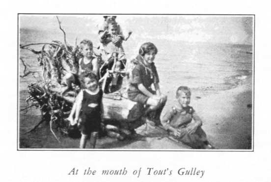 At the Mouth of Tout's Gulley.jpg